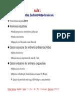 Aula1_PTG.pdf
