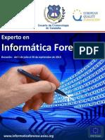 Experto en Informatica Forense.pdf