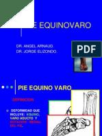PieEquinovaro.pdf