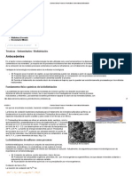Codelco Educa_ Procesos Productivos Universitarios_Biolixiviación.pdf