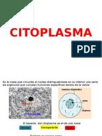 2 CITOPLASMA.pptx
