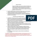 negocios inclusivos.docx