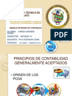 PCGA - NIIF