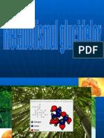 30451982-glucide-1.ppt