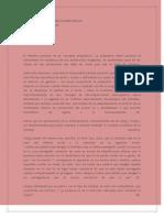 LA NEGACIÓN DE LAS PERSECUCIONES REALES.docx