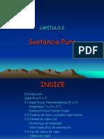 TERMO_I-CAP2-Sustancia-Pura.pdf