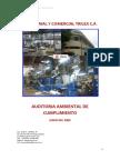 Borrador de III Auditoria Ambiental.pdf
