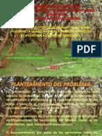 Presentacion Yagual.pdf