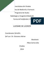 Coperta Licenta