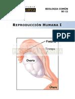 Reproducción Humana I.pdf