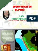 ECCORREGIONES.pptx