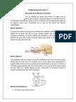 recorrdo de nervios cranelaes.docx