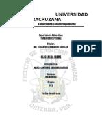 PRACTICA GLICERINA LIBRE.doc