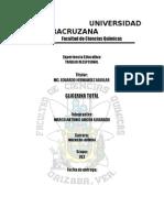 PRACTICA GLICERINA TOTAL.doc