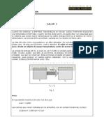 Calor I.pdf