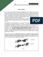 Magnetismo I.pdf