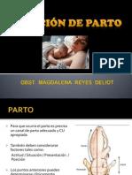 ATENCION DE PARTO.pptx