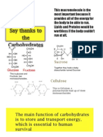Carbohydrate Poster 2012