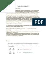 Selección aleatoria.docx