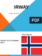 diversity term project on norway