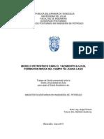 MODELO PETROFÍSICO PARA EL YACIMIENTO B-5-X.09_19.pdf