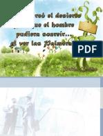 DISEÑO_ORGANIZACIONAL (1).pptx