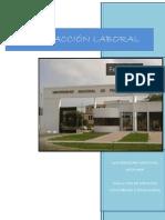 psicologia organizacional-satisfaccion laboral.docx