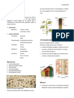 Histología vegetal final.pdf