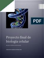 plenarias TERMINADAS.pdf