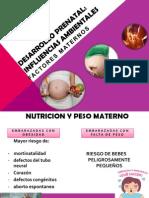 Desarrollo Prenatal.pptx