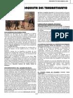 22 firme.pdf