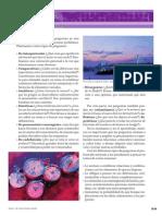 55107_Competencias.pdf