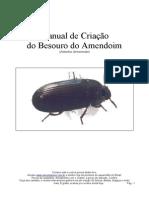 Manual_besouro.pdf