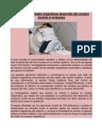 DESARROLLO DEL CORAZON.docx