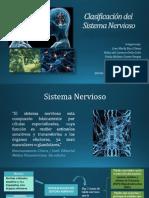 clasificaciondelsistemanervioso-140218192113-phpapp01.pdf