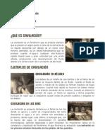 TareaTRES.pdf
