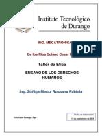 ENSAYO DERECHOS HUMANOS.docx