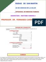 166713791-Craneo-y-Cara.pdf