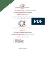 PROYECTO - corrupcion.pdf