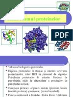 Metabolismul proteinelor 2.ppt