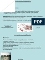 4a-ecologia2.ppt