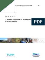 Wendland Dissertation 2009-Air Limbah