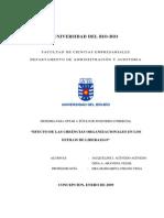Liderazgo y organizacion.pdf