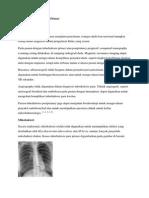 Tuberkulosis Primer Pencitraan.docx