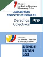GarantiasConstitucionalesDDColectivos_ChristianPaula.ppt
