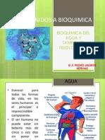 BIOQUIMICA DEL AGUA Y TAMPONES FISIOLOGICOS.ppt