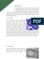 Peranan Mikroba Sebagai Pencerna Amonia