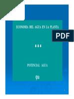 Potencial_Agua.pdf