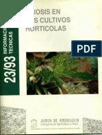 Virosis en cultivos hortícolas - Junta de Andalucia.pdf