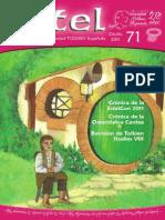 STE Revista Estel 071 Otoño 2011